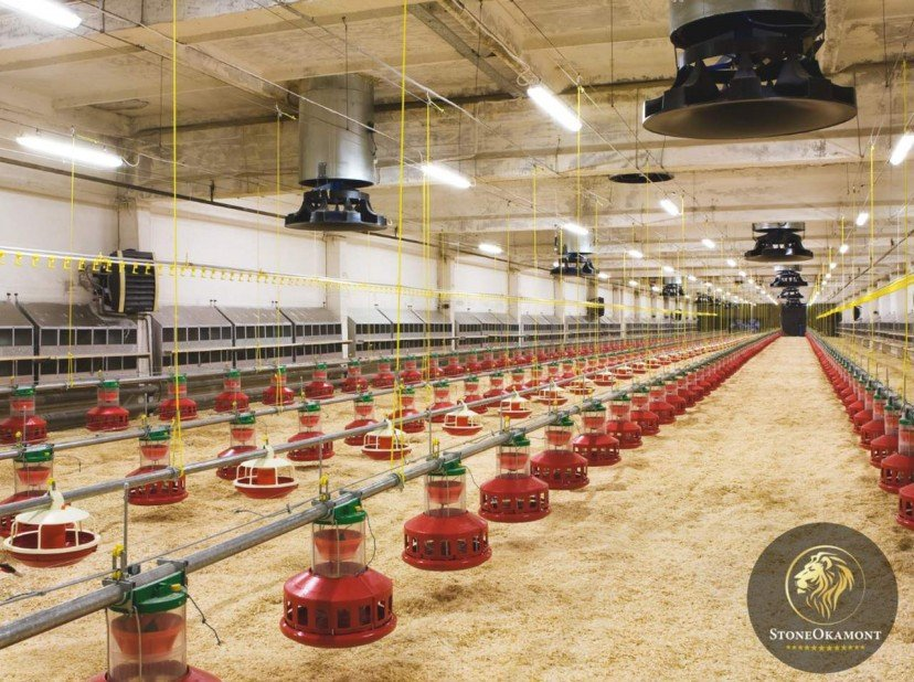 Como registrar granjas avícolas?